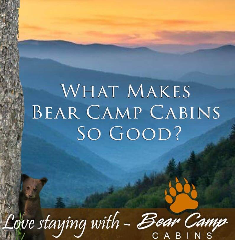 What-Makes-Bear-Camp-Cabins-So-Good.jpg