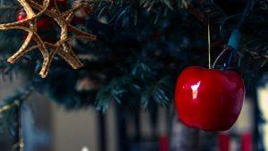 Christmas tree with deocrations. Photo Credit Matthew Ragan