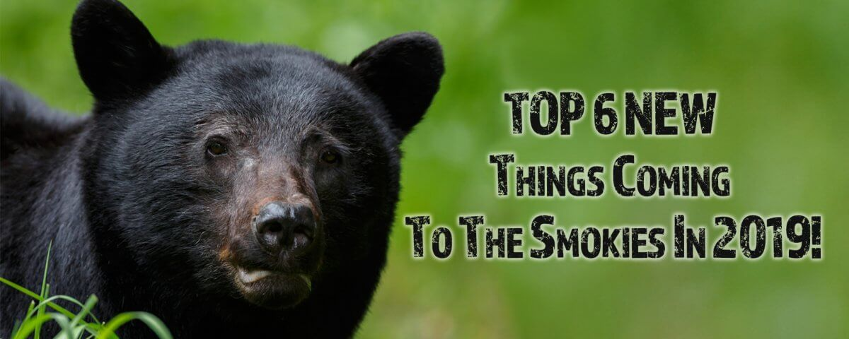 Smoky mountains New attractions for 2019